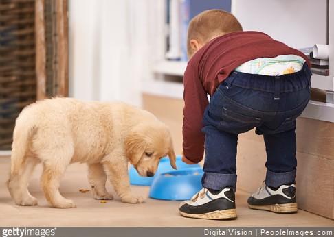 enfant-chien