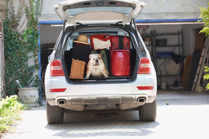 Coffre de voiture rempli de bagages